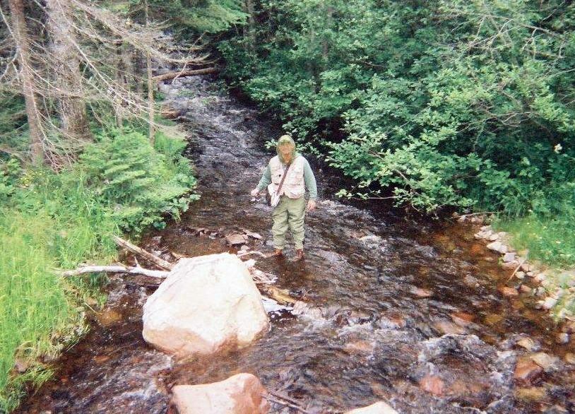 Stream Fishing Kadunce River
