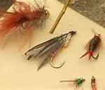 Board of Flys